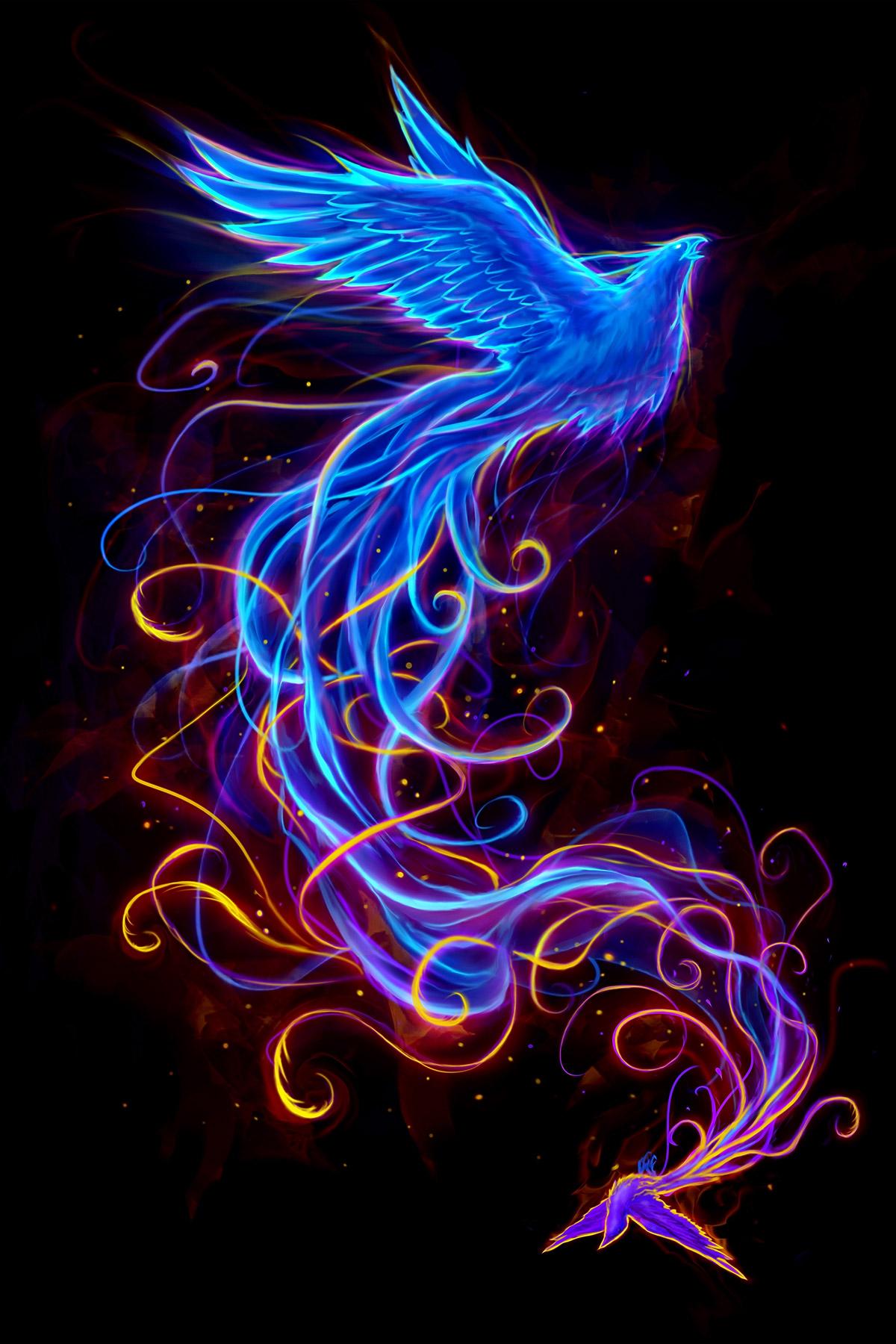 Transforming Your Phoenix